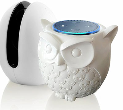 Owl Shaped Guard Station for Amazon Echo Dot