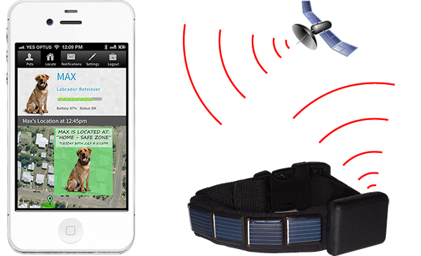 Solar iPhone GPS Tracking for Dogs
