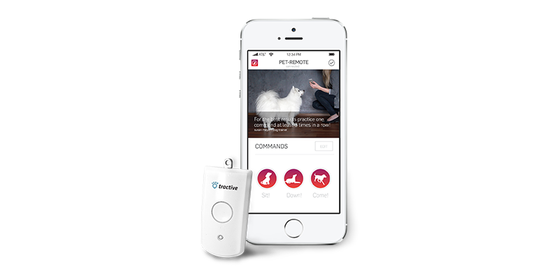 Train, Feed, and Play with Your Dog Using an iPhone: 4 Products