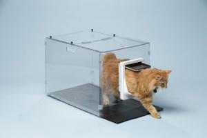 4 Pet Feeders You Should See
