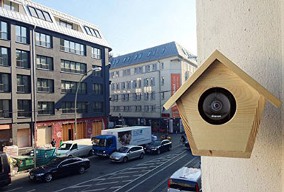 nesst-cam-birdhouse