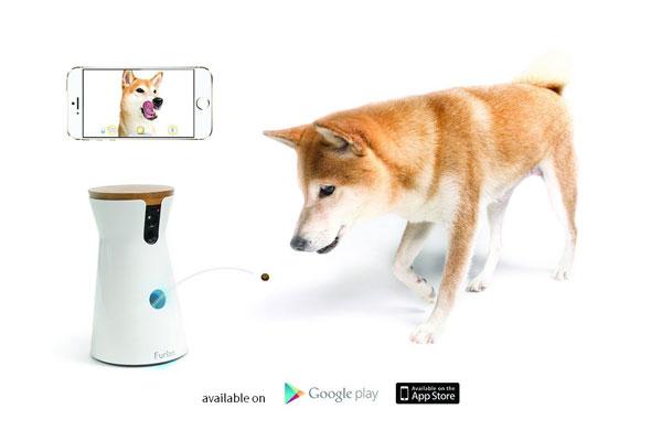Furbo-Treat-Tossing-Dog-Camera