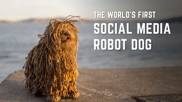 Soshee Robot Dog with Social Media Notifications
