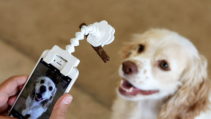 Flexy Paw Smartphone Attachment for Pet Selfies