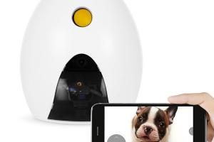 FunPaw Playbot Q Robot Camera & Pet Feeder