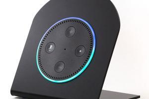 Echo Dot Vertical Case