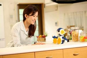 5 Interactive Companion Robots for Your Home