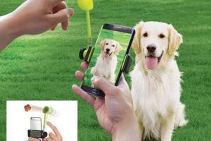 Perfect Pic: Pet Selfie Tool for Smartphones