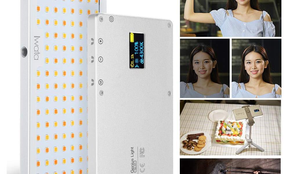 Iwata GL-01 Portable Smartphone Video Light