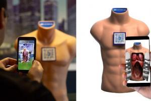 Victor The Torso Augmented Reality Human Torso Model